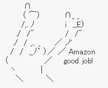 Amazon_Good_Job.jpg.jpg