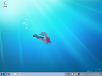 Windows 7-2009-05-06-13-10-41.png