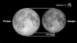 20110320_Super_Full_Moon.jpg
