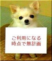 アコム_クーちゃん_利用する時点で無計画.jpg
